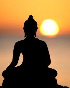 23-26 Nov : Vipassana Retreat With Lama Tenzin @ Osho Nirvana Ashram